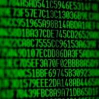 Random hexadecimal codes on a computer monitor.  Shallow depth of field.